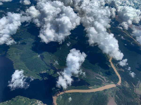Schicksal der Amazonaswälder und ihrer Bewohner
