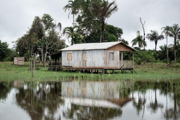 Amazonien ist wieder auf den Titelseiten